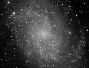 M-33 Observatorio Astronómico El Maestrat cod. J19. Felipe Peña.