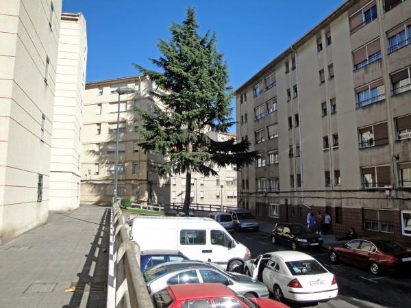 calle-lozono-07