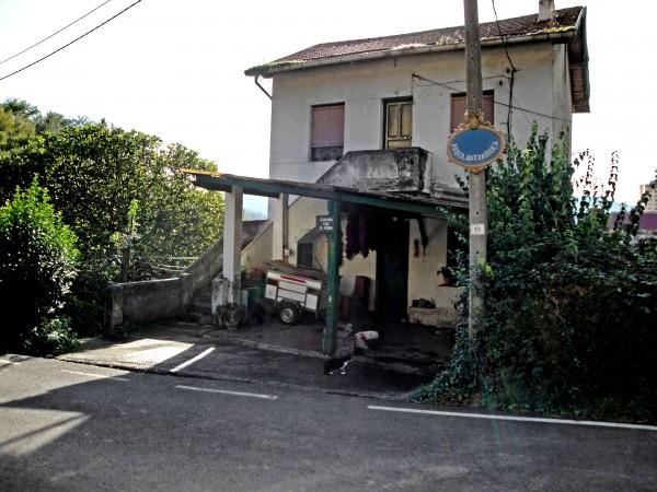 camino-arbolantxa-15