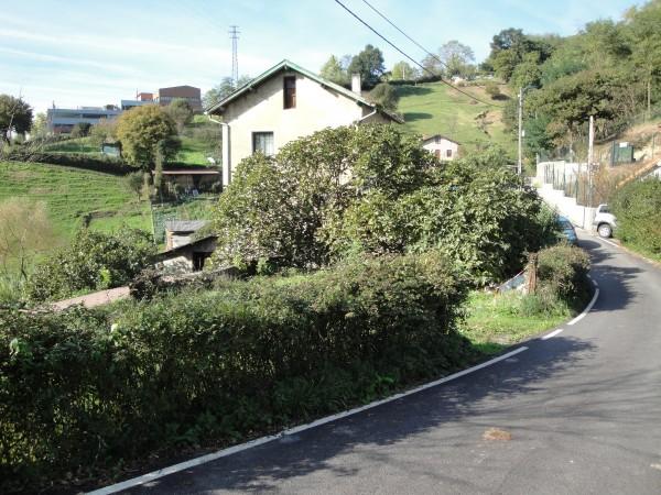 camino-arbolantxa-16